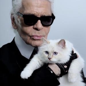 Choupette-Stars-Karl-Lagerfeld-Net-Porter-Video